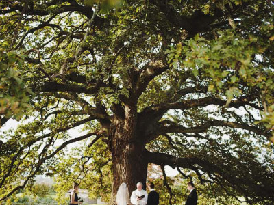well, we're getting married under a tree...