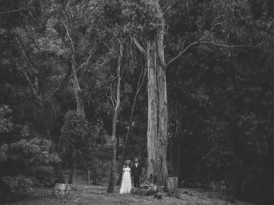 julia & ollie | mornington peninsula wedding