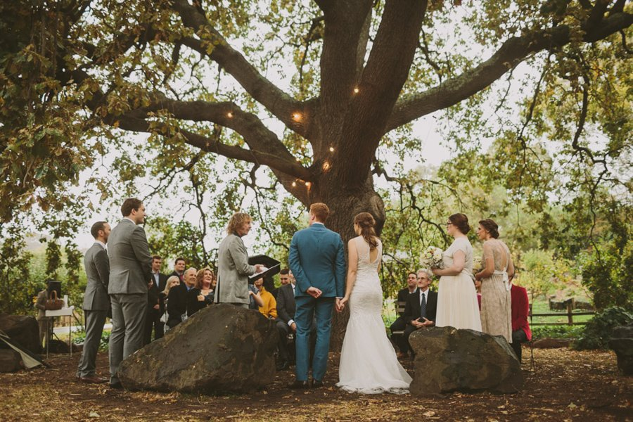 A huge tree, strung with fairy lights, for Bridget and Tim's Collingwood Children's Farm wedding